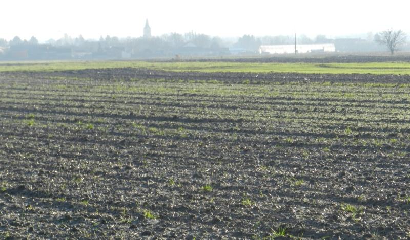 Javna rasprava o zakupu državnog poljoprivrednog zemljišta u Općini Nedelišće