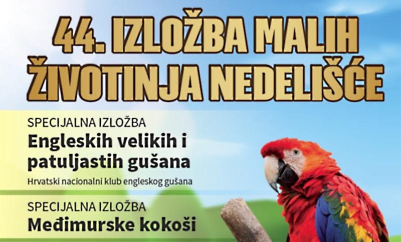44. izložba malih životinja ovog vikenda na MESAP-u