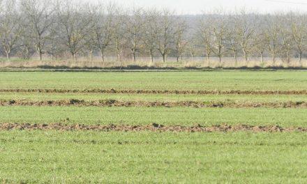 Novi termin izobrazbe o održivoj upotrebi pesticida u Nedelišću