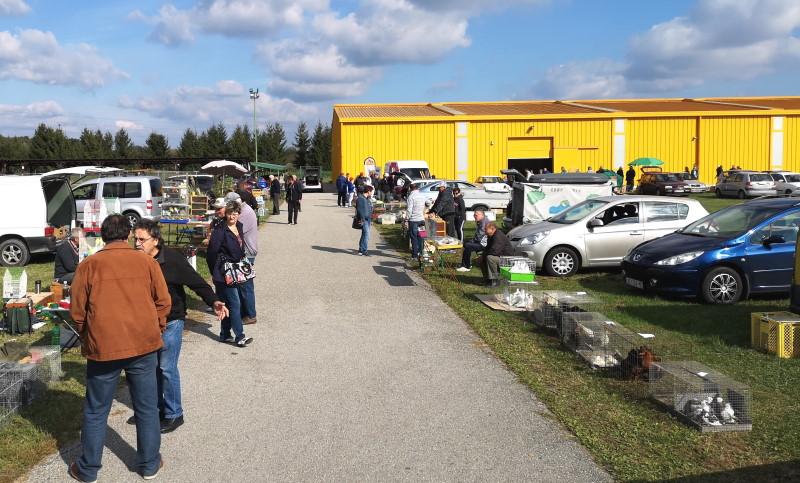 U nedjelju prodajno-izložbeni sajam malih životinja na Mesapu